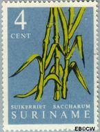 Suriname SU 357  1961 Inheemse vruchten 4 cent  Gestempeld