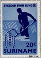 Suriname SU 395  1963 Anti-honger campagne V.N. 20 cent  Gestempeld