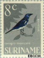 Suriname SU 445  1966 Vogels 8 cent  Gestempeld