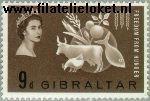 Gibraltar gib 163#  1963 Anti-honger  Postfris