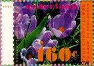 Nederland NL 1671a  1996 Voorjaarsbloemen 160 cent  Gestempeld