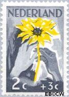 Nederland NL 538  1949 Zonnebloem 2+3 cent  Gestempeld