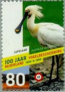 Nederland NL 1811  1999 Vogelbescherming 80 cent  Gestempeld