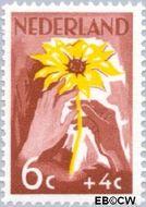Nederland NL 539  1949 Zonnebloem 6+4 cent  Gestempeld