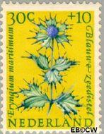 Nederland NL 742  1960 Bloemen 30+10 cent  Gestempeld