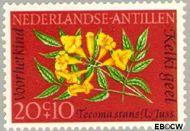 Nederlandse Antillen NA 349  1964 Bloemen 20+10 cent  Gestempeld