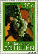 Nederlandse Antillen NA 634  1979 Bloemen 40 cent  Gestempeld