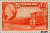 Suriname SU 228  1945 Wilhelmina en landschappen 7½ cent  Gestempeld
