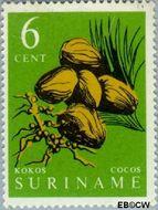 Suriname SU 359  1961 Inheemse vruchten 6 cent  Gestempeld