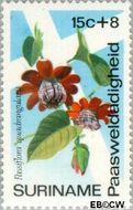 Suriname SU 617  1974 Bloemen 15+8 cent  Gestempeld