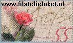 Bundesrepublik brd 2317#  2003 Rozen  Postfris