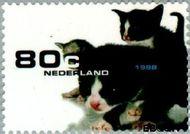 Nederland NL 1779  1998 Huisdieren 80 cent  Gestempeld