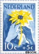 Nederland NL 540  1949 Zonnebloem 10+5 cent  Gestempeld
