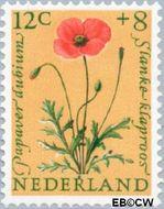 Nederland NL 741  1960 Bloemen 12+8 cent  Postfris