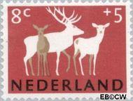 Nederland NL 813  1964 Dieren 8+5 cent  Gestempeld