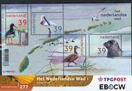 Nederland NL M277  2003 Nederlandse Wad  cent  Postfris