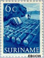 Suriname SU 300  1953 Inheemse voorstellingen 6 cent  Gestempeld