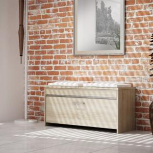 TEBAS101 - Bancuta, pantofar 100 x 38 x 46 cm, Sonoma