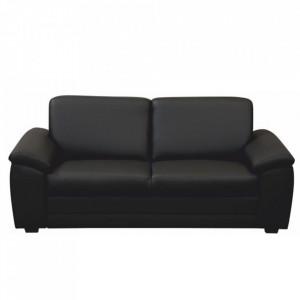 3- şed cu Mânere, piele eco neagră, BITER