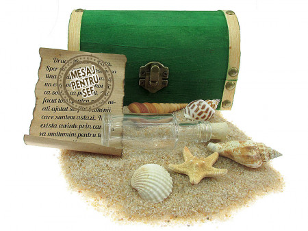 Cadou pentru Sef personalizat mesaj in sticla in cufar mediu verde