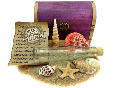 Cadou pentru Invatatoare personalizat mesaj in sticla in cufar mare mov