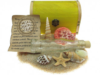 Cadou pentru Taur personalizat mesaj in sticla in cufar mare galben