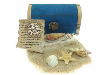 Cadou pentru Scorpion personalizat mesaj in sticla in cufar mediu albastru