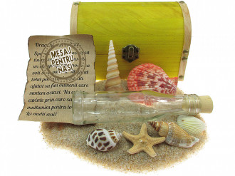 Cadou pentru Nasi personalizat mesaj in sticla in cufar mare galben
