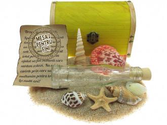 Cadou pentru Fini personalizat mesaj in sticla in cufar mare galben
