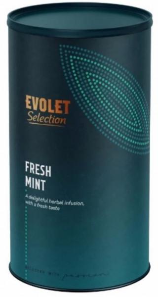 Ceai EVOLET Selection infuzie TUB - Fresh Mint Tea