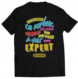 Expert [Gemeni]