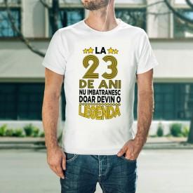 Devin o legenda [23]