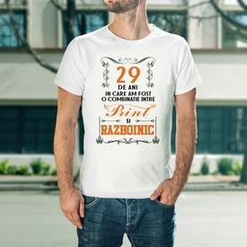 Print si Razboinic [29]