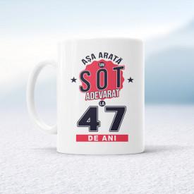 Soț adevărat - 47