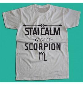 Stai calm - Scorpion [Tricou] *LICHIDARE STOC*