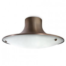 30663/06/16 Philips Ecomoods ceiling lamp bronze 1x20W 230V