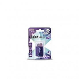 9000175 - 8436039201750 GSC evolution bateria alcalina de 9V, blister pack 1 unidade