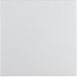 16208989 - S.1/B.x - tecla simples, branco BERKER EAN:4011334277170