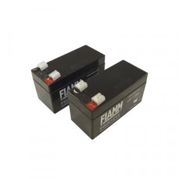 ROGER Kit Baterias c/ Carregador Brushless 1,2A / 24V B71/BC/BT12V12