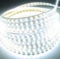 Fita LED SMD 5050 120LEDS/MT (W) IP65 Branco Frio 220VAC