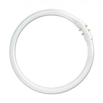 OSRAM LEDVANCE - 4050300529325 - Tradicional 46890 WFL 20W 12V GU4 GU4