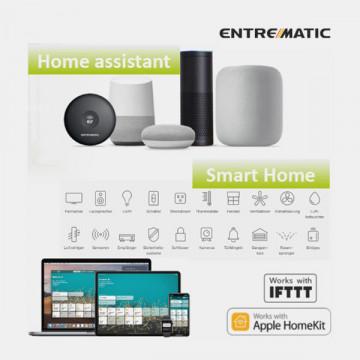 ESCWT - KIT DITEC Entrematic Smart Connect