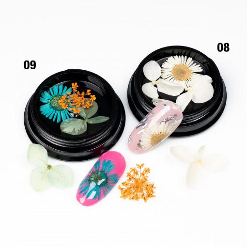 Poze Flori Uscate Unghii Blossom #08 - LUXORISE