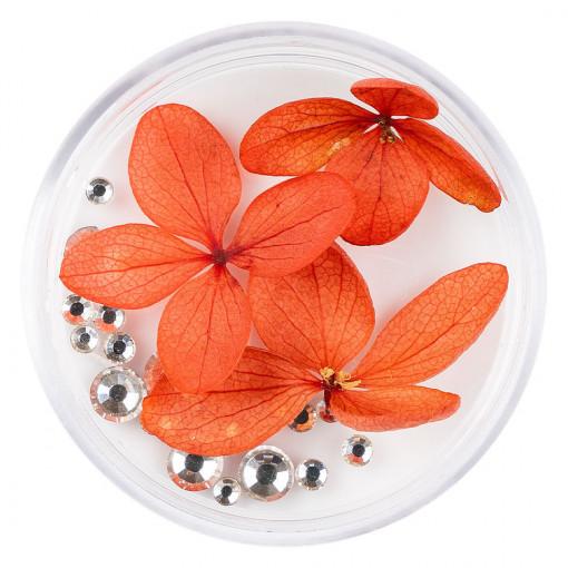 Poze Flori Uscate Unghii cu cristale - Floral Fairytale #20 LUXORISE