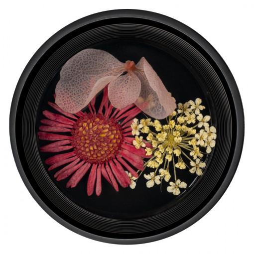 Poze Flori Uscate Unghii Blossom #10 - LUXORISE