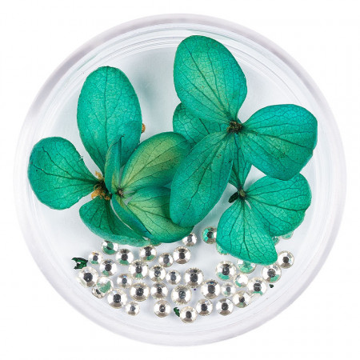 Poze Flori Uscate Unghii cu cristale - Floral Fairytale #03 LUXORISE