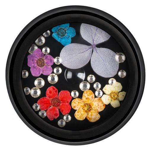 Poze Flori Uscate Unghii cu cristale - Floral Fairytale #07 LUXORISE