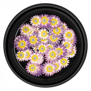 Decoratiuni Unghii Nail Art Believe Flowers, LUXORISE