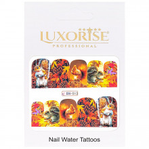 Tatuaj unghii GoldenFall BN-513, LUXORISE