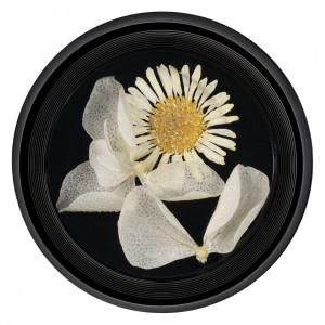 Flori Uscate Unghii Blossom #08 - LUXORISE